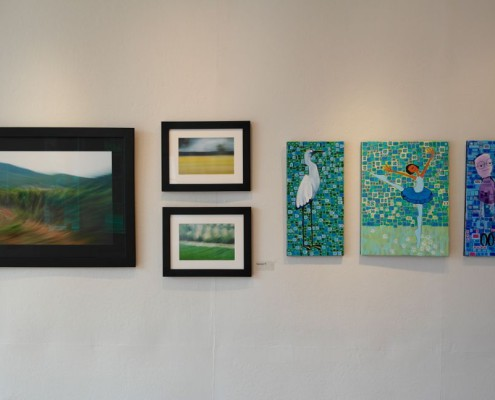 Members Exhibition, installation shot, 2014 Open Studios