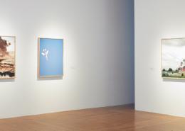 Gallery 263 Past Artist Profiles: Sean Thomas Foulkes